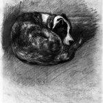 Sleeping Dog (Chien endormi)