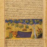 """Job Lying Under a Tree,"" Page from an Illustrated Manuscript of the Majma` al-tavarikh (Collection of Chronicles) of Hafiz Abru (d. 1430)"