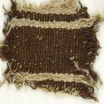 Specimen of Woolen Weave