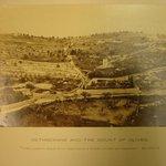 Gethsamane and the Mount of Olives