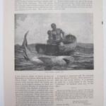 Shark Fishing-Nassau Bar