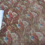 Carpet Fragments