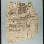 Large Fragment of Papyrus