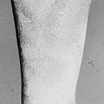 Uninscribed Ushabti