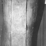 Large Anthropoid Sarcophagus with Mummy