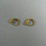 Small Loop Earring with Lions Head