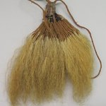 Old Mans Beard Ornament (Pavahina)