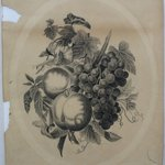 [Still Life with Apples, Grapes, and Morning Glories]