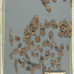 Small Fragments of Papyri