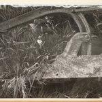 Discarde Plow - Hoogdal