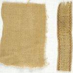 Plainweave Fabric