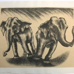 Dancing Elephants