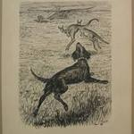 """Chapter XIV """"The Animal Village,"""" """"A Big Black Dog Came Rushing Out"""""""