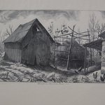 Hungarian American Farm