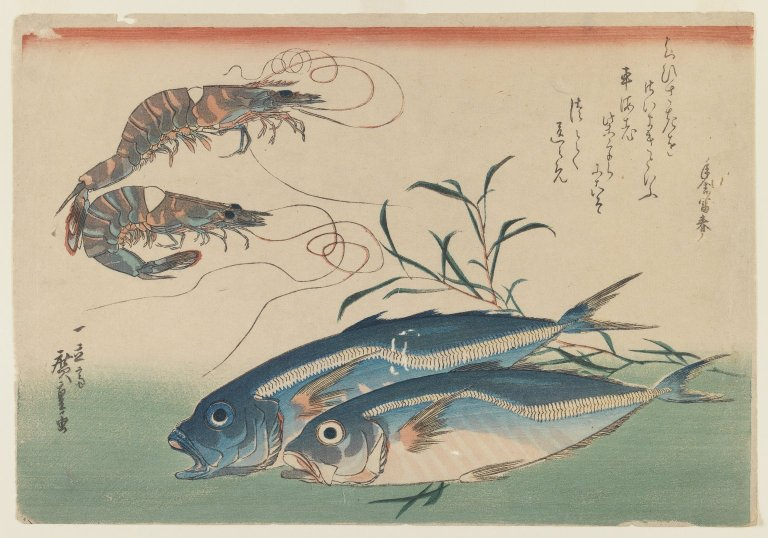 Brooklyn Museum: Two Shrimp with Two Horse Mackerel