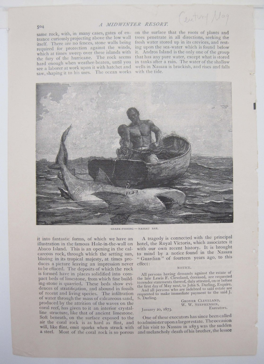 Brooklyn Museum: Shark Fishing-Nassau Bar