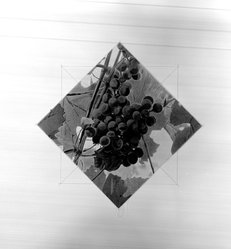 Russell Drisch (American, born 1944). Gateway (Detail #1), 1989. Screenprint, Sheet: 30 1/4 x 30 1/4 in. (76.8 x 76.8 cm). Brooklyn Museum, Gift of the Community Committee of the Brooklyn Museum, 1989.80.1. © artist or artist's estate