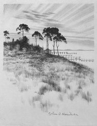 John C. Menihan (American, 1908-1992). Pines Near Osterville, ca. 1942. Lithograph on cream-colored thin laid paper, Image: 8 1/16 x 6 7/8 in. (20.5 x 17.5 cm). Brooklyn Museum, Gift of the family of John C. Menihan, 1993.223.3. © artist or artist's estate
