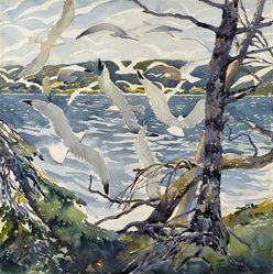 William Starkweather (American, born Scotland, 1879-1969). Gulls at Shipwreck Bay, ca. 1927. Transparent watercolor with touches of opaque watercolor over graphite on white, thick, rough textured wove paper, 20 x 20 in. (50.8 x 50.8 cm). Brooklyn Museum, Museum Collection Fund, 27.191. © artist or artist's estate