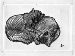 Théophile Alexandre Steinlen (French, 1859-1923). Two Sleeping Cats. Drawing, conte crayon on wove paper, Sheet: 5 1/2 x 7 7/8 in. (14 x 20 cm). Brooklyn Museum, Gift of the Estate of Emily Winthrop Miles, 64.98.281. © artist or artist's estate