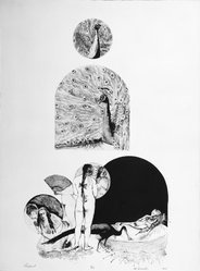 Murray Zimiles (American, born 1941). Pea Fowl, 1968. Lithograph on paper, sheet: 30 1/8 x 22 1/4 in. (76.5 x 56.5 cm). Brooklyn Museum, Gift of the artist, 69.58.4. © artist or artist's estate