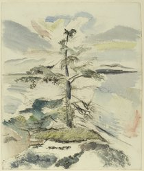 John Marin (American, 1870-1953). Pine Tree, 1917. Watercolor and charcoal on cream, thick, rough textured wove paper, Sheet: 19 3/8 x 16 3/8 in. (49.2 x 41.6 cm). Brooklyn Museum, Gift of Mr. and Mrs. Milton Lowenthal, 70.147. © artist or artist's estate