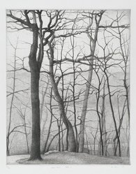 Bryan Kay (American, born 1944). Crowhill State 3, 1975. Etching, Sheet: 18 3/4 x 15 in. (47.6 x 38.1 cm). Brooklyn Museum, Designated Purchase Fund, 77.15. © artist or artist's estate