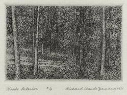 Richard Claude Ziemann (American, born 1932). Woods Interior, 1971. Etching on paper, sheet: 8 3/4 x 8 9/16 in. (22.2 x 21.7 cm). Brooklyn Museum, Gift of the artist, 77.162.3. © artist or artist's estate