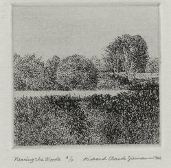 Richard Claude Ziemann (American, born 1932). Nearing the Woods, 1966. Etching on paper, sheet: 8 3/4 x 8 9/16 in. (22.2 x 21.7 cm). Brooklyn Museum, Gift of the artist, 77.162.7. © artist or artist's estate