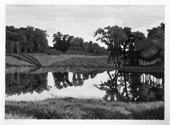 Gordon Mortensen (American, born 1938). Summer Pond, 1976. Woodcut on paper, sheet: 21 1/4 x 29 in. (54 x 73.7 cm). Brooklyn Museum, Gift of ADI Gallery, 77.62.6. © artist or artist's estate