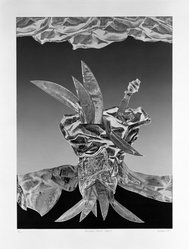 Jim McLean (American, born 1928). Primitive Plant - State I, 1975. Relief etching on paper, sheet: 28 1/2 x 21 5/8 in. (72.4 x 54.9 cm). Brooklyn Museum, Gift of the artist, 77.71.1. © artist or artist's estate