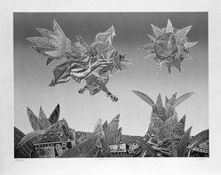 Jim McLean (American, born 1928). Flight Over Busch Gardens, 1975. Relief etching, sheet: 28 1/2 x 35 1/4 in. (72.4 x 89.5 cm). Brooklyn Museum, Gift of the artist, 77.71.3. © artist or artist's estate