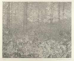Richard Claude Ziemann (American, born 1932). Ferns, 1978-1979. Etching and engraving on paper, sheet: 15 3/8 x 17 in. (39.1 x 43.2 cm). Brooklyn Museum, Designated Purchase Fund, 80.150.2. © artist or artist's estate
