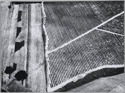 Mario Giacomelli (Italian, 1925-2000). [Untitled], 1976. Gelatin silver photograph, Sheet: 11 1/2 x 15 7/16 in. (29.2 x 39.2 cm). Brooklyn Museum, Gift of Dr. Daryoush Houshmand, 80.216.11. © Simone Giacomelli