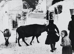 Mario Giacomelli (Italian, 1925-2000). [Untitled], n.d. Gelatin silver photograph, Sheet: 11 7/16 x 15 9/16 in. (29.1 x 39.5 cm). Brooklyn Museum, Gift of Dr. Daryoush Houshmand, 80.216.14. © Simone Giacomelli