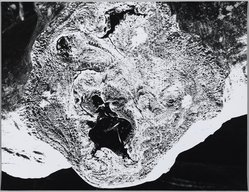 Mario Giacomelli (Italian, 1925-2000). [Untitled], n.d. Gelatin silver photograph, sheet: 11 3/8 x 14 3/4 in. (28.9 x 37.5 cm). Brooklyn Museum, Gift of Dr. Daryoush Houshmand, 80.216.33. © Archivio Mario Giacomelli Sassoferrato