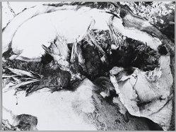 Mario Giacomelli (Italian, 1925-2000). [Untitled], n.d. Gelatin silver photograph, Sheet: 11 3/8 x 15 5/16 in. (28.9 x 38.9 cm). Brooklyn Museum, Gift of Dr. Daryoush Houshmand, 80.216.35. © Archivio Mario Giacomelli Sassoferrato