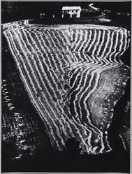 Mario Giacomelli (Italian, 1925-2000). [Untitled], n.d. Gelatin silver photograph, sheet: 15 1/2 x 11 11/16 in. (39.4 x 29.7 cm). Brooklyn Museum, Gift of Dr. Daryoush Houshmand, 80.216.6. © Simone Giacomelli