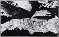 Mario Giacomelli (Italian, 1925-2000). [Untitled], 1975. Gelatin silver photograph, Sheet: 10 x 15 5/8 in. (25.4 x 39.7 cm). Brooklyn Museum, Gift of Dr. Daryoush Houshmand, 80.216.9. © Simone Giacomelli