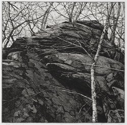 Stephen Fisher (American, born 1954). Gothic Landscape I, 1979. Etching, Sheet: 15 5/16 x 14 13/16 in. (38.9 x 37.6 cm). Brooklyn Museum, Designated Purchase Fund, 80.27.1. © artist or artist's estate