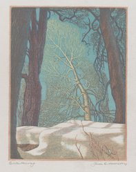 James D. Havens (American, 1900-1960). Winter Morning, 1951. Wood engraving, Sheet: 10 5/8 x 8 1/8 in. (27 x 20.6 cm). Brooklyn Museum, Designated Purchase Fund, 80.60.5. © artist or artist's estate