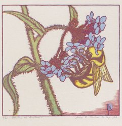 James D. Havens (American, 1900-1960). Bombus on Anchusa, 1938. Wood engraving in color, Sheet: 9 1/2 x 10 9/16 in. (24.2 x 26.9 cm). Brooklyn Museum, Frank L. Babbott Fund, 81.98.5. © artist or artist's estate