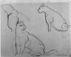 William Zorach (American, born Lithuania, 1887-1966). Pumas, ca. 1940. Graphite on tissue paper, Sheet: 11 3/16 x 14 in. (28.4 x 35.6 cm). Brooklyn Museum, Gift of William Bloom, 84.46.5. © artist or artist's estate