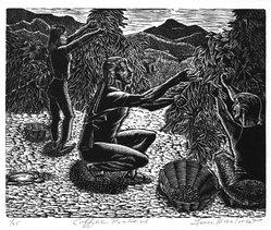 Lou Barlow (American, 1908-2011). Coffee Pickers, 1986. Linocut on Rives paper, Sheet (folio): 15 x 13 1/4 in. (38.1 x 33.7 cm). Brooklyn Museum, Gift of the artist, 87.197.10. © artist or artist's estate