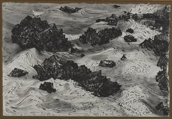 Peter Blume (American, 1906-1992). Untitled (Rocks and Sea with Gulls), 1958. India ink on Japanese paper, 12 3/4 x 18 1/2 in. (32.4 x 47 cm). Brooklyn Museum, Bequest of Nancy S. Holsten in memory of Edward L. Holsten, 87.204.4. © artist or artist's estate