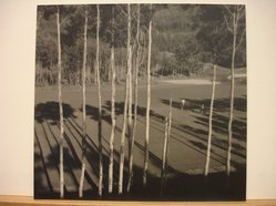 Charles L. Moffat (Canadian). Fairway Shadows. Photograph Brooklyn Museum, Gift of the artist, 41.625. © artist or artist's estate
