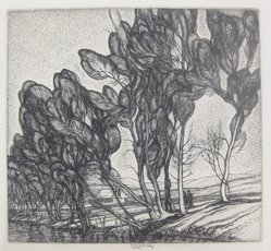 Roi Partridge (American, 1888-1984). Tall Willows, 1932-1933. Etching on paper, sheet: 8 1/2 x 10 7/8 in.  (21.6 x 27.6 cm);. Brooklyn Museum, Designated Purchase Fund, 79.57.3. © artist or artist's estate