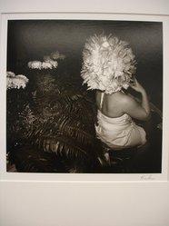 Karl Gernot Kuehn (American, born Germany, 1940). Mums, 1981. Gelatin silver photograph Brooklyn Museum, Gift of Karl Gernot Kuehn, 84.90.9. © artist or artist's estate