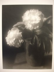 Julio Piedra (American, born 1937). Untitled (Still Life). Gelatin silver photograph Brooklyn Museum, Gift of Carl J. Lana, 85.87.2. © artist or artist's estate